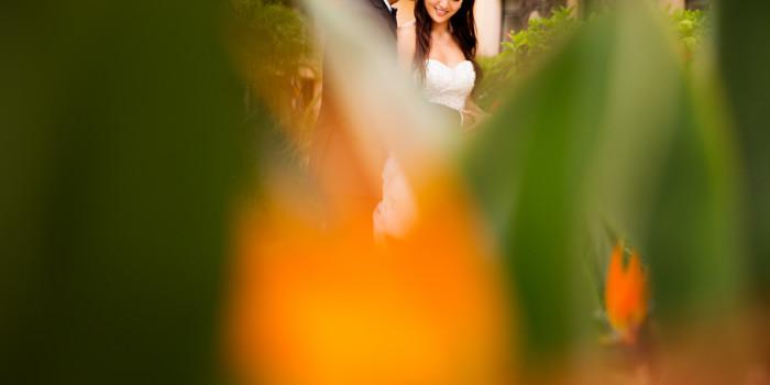 Vincent+Cynthia Wedding   Cabo, Mexico